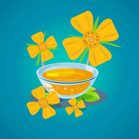 evening primrose oil - vector illustration