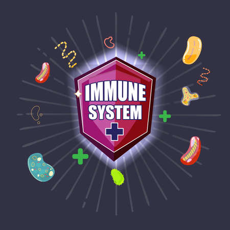 immune shield with reflect virus and bacteria, immune system defence concept - vector illustration Stock Illustratie