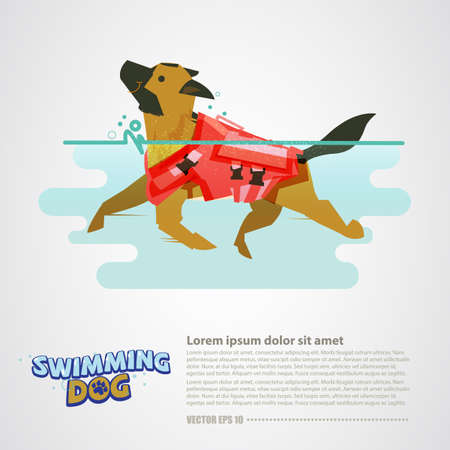 Dog with lifeguard swimming in the water vector illustration