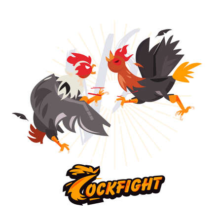 Cockfighting. character design come with typographic for infographic or header design  vector illustration Ilustração