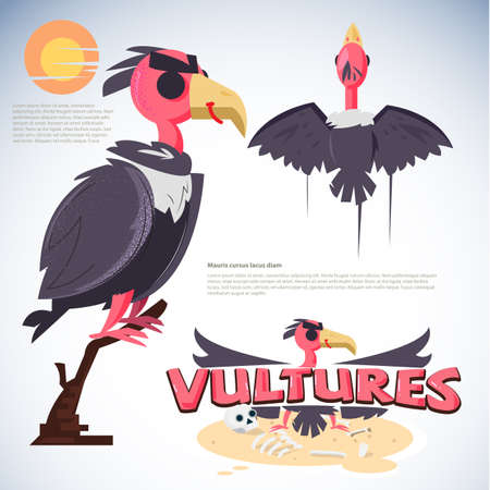 Vulture character design. set of vulture cartoon -vector illustration Illustration