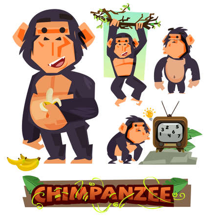 gazing: Chimpanzee holding banana. character design set with typographic. clever. apes concept - vector illustration