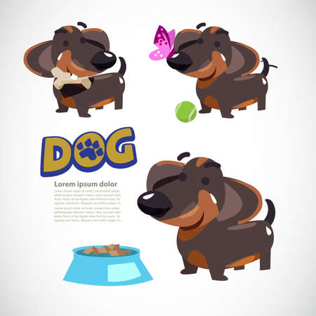 Cute dog in various action, dog with butterfly, dog with tennis ball, dog with bone and food. character design. typographic. dachshund - vector illustration. Ilustracja