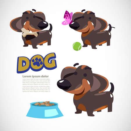 Leuke hond in verschillende actie, hond met vlinder, hond met tennisbal, hond met been en voedsel. personage ontwerp. typografisch. Teckel - vectorillustratie.