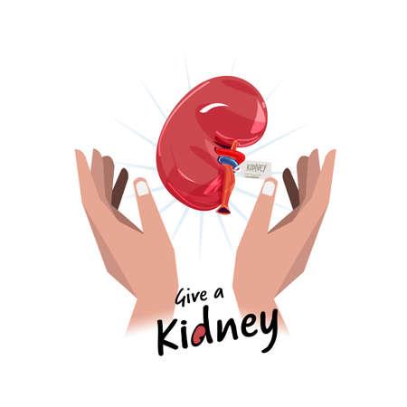 Hand met nier. Hoop voor orgaandonatie concept - vectorillustratie