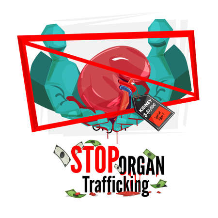 Doctors hand with human kidneys with price tag. Stop organ traffickking sign - vector illustration
