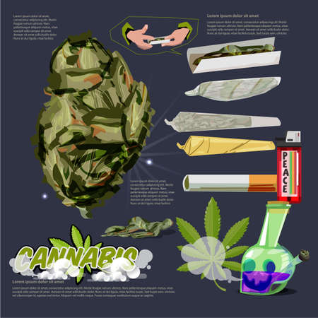 Cannabis or Marijuana Buds raw joint. bong infographic with logotype - vector illustration Archivio Fotografico - 115342084