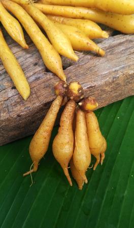 Fingerroot on Wood and Banana Leaf