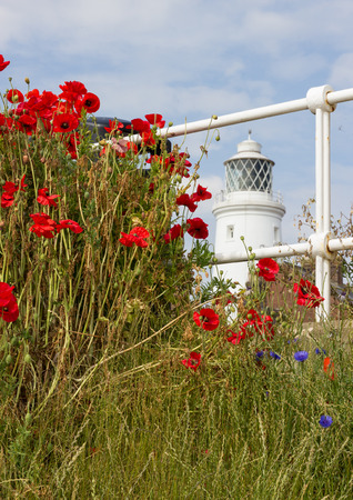 southwold: Southwold lighthouse and Poppies Stock Photo