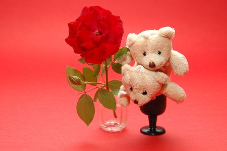 bear in cup and rose photo