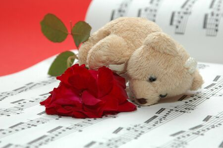 bear with musical score photo