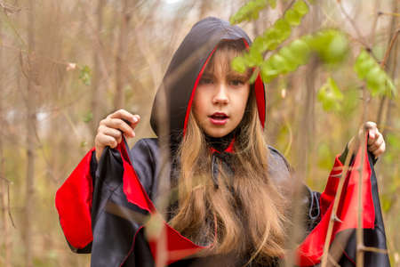 The girl in a red and black cape in the forest photo
