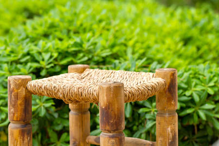 chear: wicker wooden chair on a background of green foliage