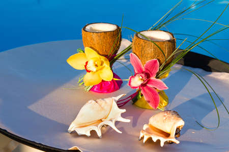 two glasses of coconut with orchids and two seashells on blue bacground photo
