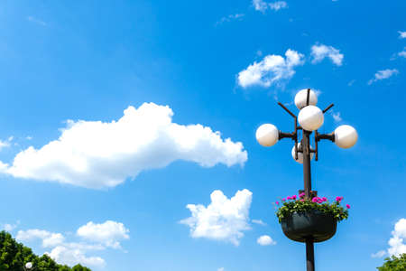 Street lamps with a flowers on a blue sky background photo