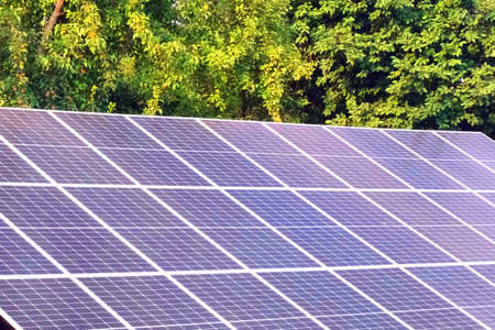 Solar Photovoltaic Energy Panels Close-Up on a background of green trees at Sunny Day 写真素材