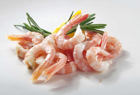 coldwater: Coldwater shrimps with rosemary and lemon on the gray