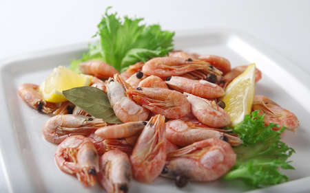 Coldwater shrimps with lettuce and lemon on the black plate