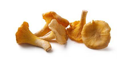 paddenstoel: Handvol gele cantharellen op het witte