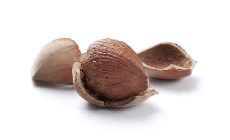 nutshell: Hazelnut core and nutshell on the white background