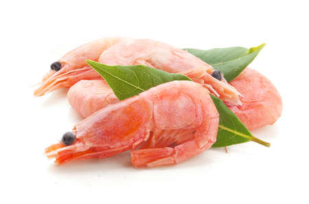coldwater: Handful of red coldwater shrimps with green bay leaf