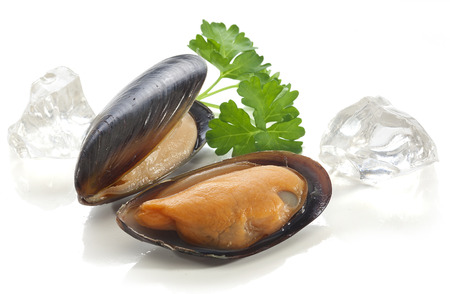 Two mussels in the shell with parsley and ice