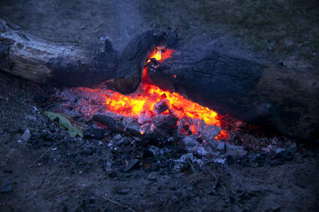 embers: Embers of bonfire in the evening