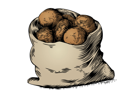 Drawing of sack of potatoes on the white background