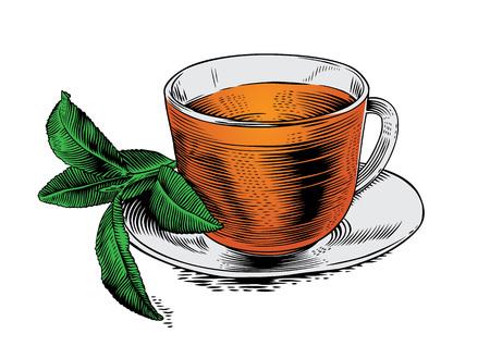 gravure: Vetro tazza di t� con foglie di t� verde