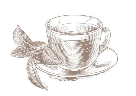 gravure: Glass cup of tea with fresh green tea leaves