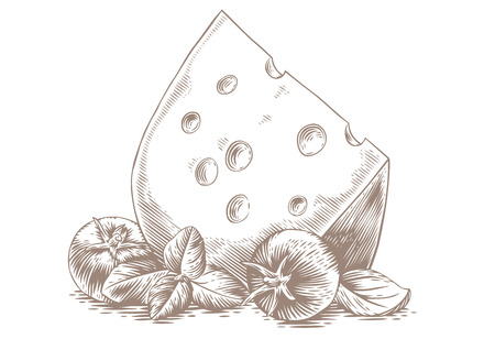 basil: Drawing of the piece of cheese with tomato and basil