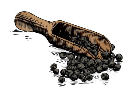 gravure: Drawing of wooden scoop with black peppers on the white Illustration