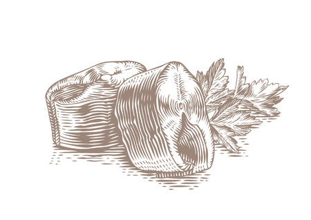 mackerel: Drawing of two pieces of mackerel with fresh parsley Illustration