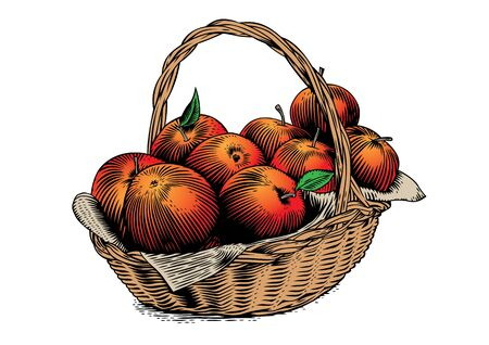 Drawing of bunch of apples in the wicker basket Ilustração