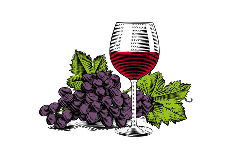 gravure: Drawing of glass of red wine with bunch of grape