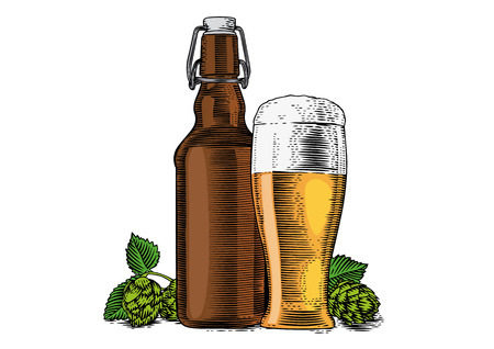 glass of beer: Drawing of bottle and glass with beer and hops cones Illustration
