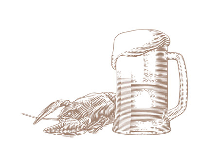 boiled: Drawing of beer glass and boiled red crawfish on the white Illustration