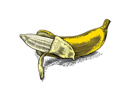 gravure: Drawing of isolated yellow partially peeled banana on the white