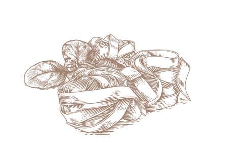 Drei rohe Nudeln Nest mit frischen grünen Basilikum auf dem weißen Vektorgrafik