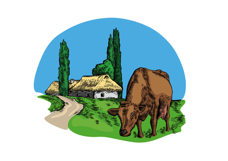 Drawing of cow in the village