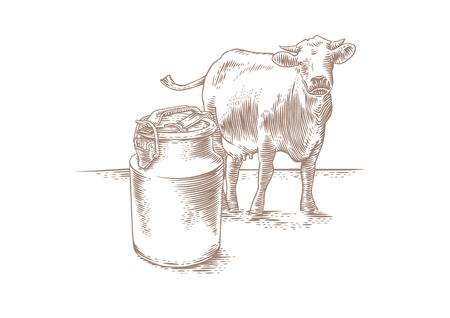 Drawing of can of milk and a brown cow on the grass