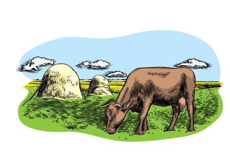 Drawing of cow on the meadow with haystacks and clouds Stock fotó - 75903623