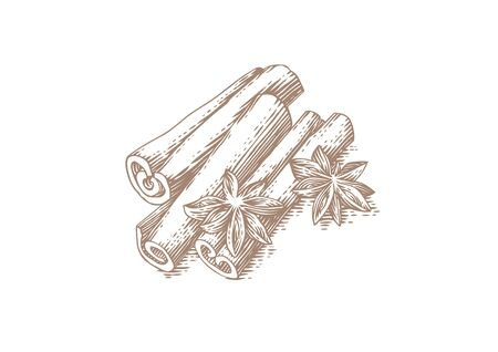 Drawing of handful of cinnamon sticks and star anise