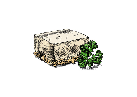 Piece of meat jelly with branch of green parsley