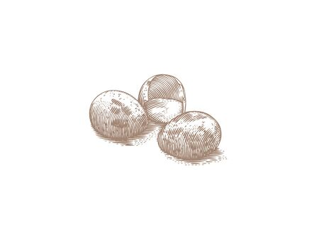 broken eggs: Two wholes and one broken quail eggs, hand drawn illustration graphic design.
