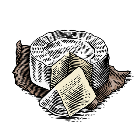 Disk and piece of Camembert on the paper. Иллюстрация