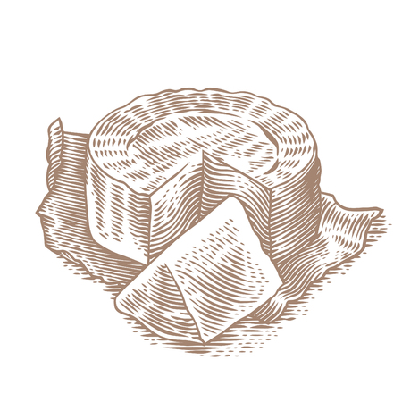 Disk and piece of Camembert on the paper. Illustration