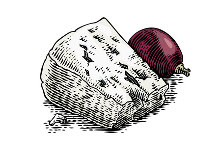Drawing of pieces of blue cheese with grape on the white Çizim