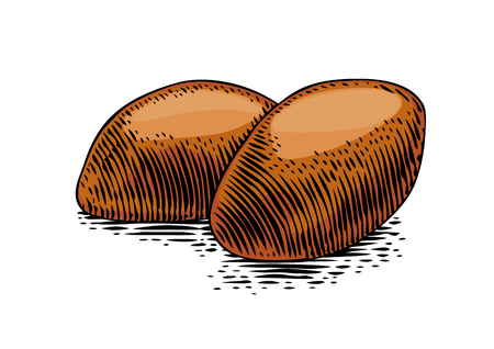 Drawing of isolated fresh hotcakes on the white background