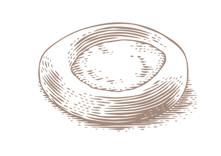 Drawing of isolated fresh cheesecake on the white background Vectores